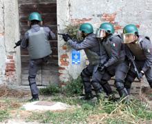 A.T.P.I. (Baschi verdi) - Anti Terrorismo Pronto Impiego  Archivio  -  MILITARI FORUM 9705b0c31ce8