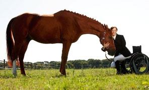 Televideo Il Cavallo Oltre Lo Sport
